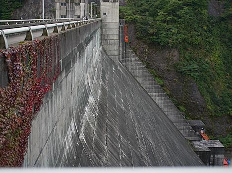 Dam02